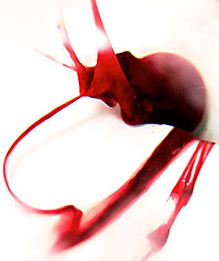 Arte menstrual de Beauty in Blood