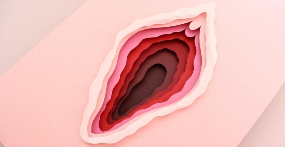 Tipos de vulvas