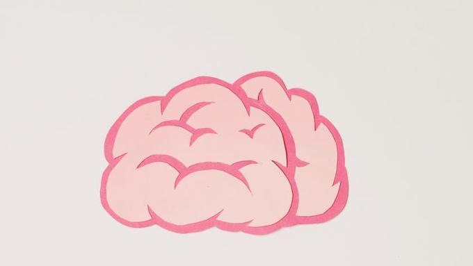 La química sexual del cerebro
